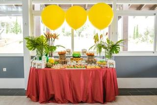 mesas-buffet-catering-013
