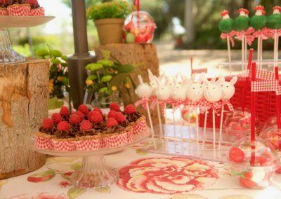 mesas-buffet-catering-014